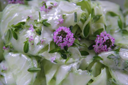 salade de concombre copy copy copy